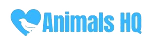 Animals HQ